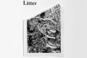 Litter – Brian Cheung